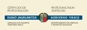 certificado de profesionalidad del gobierno vasco como desarrollador de páginas web